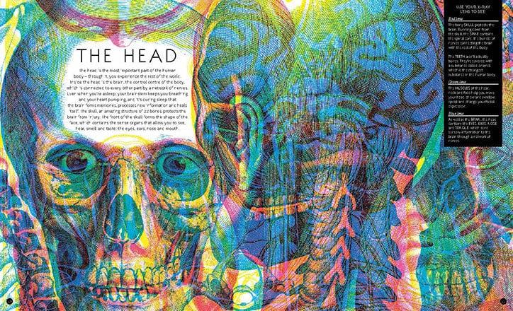 Carnovsky Illumanatomy book Wide Eyed editions publication itsnicethat 2 - Carnovsky ilustruje lidské tělo pod rentgenovým paprskem pomocí techniky RGB ilustrace