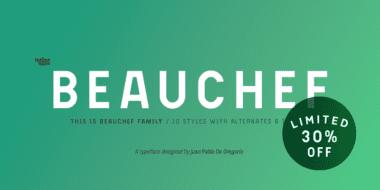 250493 380x190 - Font dňa – Beauchef