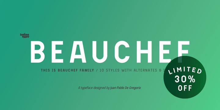 250493 - Font dňa – Beauchef