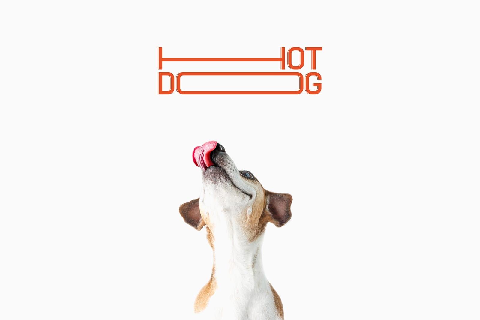 HOT DOG 3 - Ach, tie obaly – HOT DOG klobásky pro psy