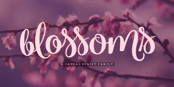 242490 580x290 - Font dňa – Blossoms