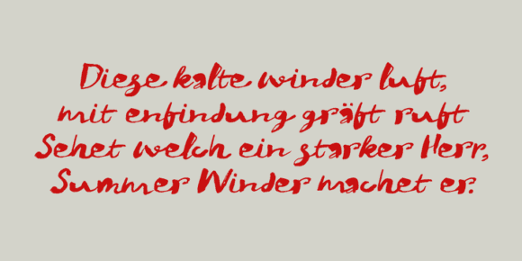 252266 580x290 - Font dňa – Winterberry