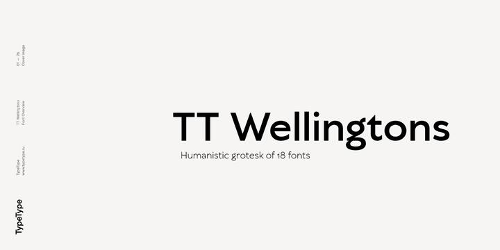 252454 - Font dňa – TT Wellingtons