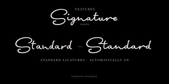 255725 580x290 - Font dňa – Signature Script