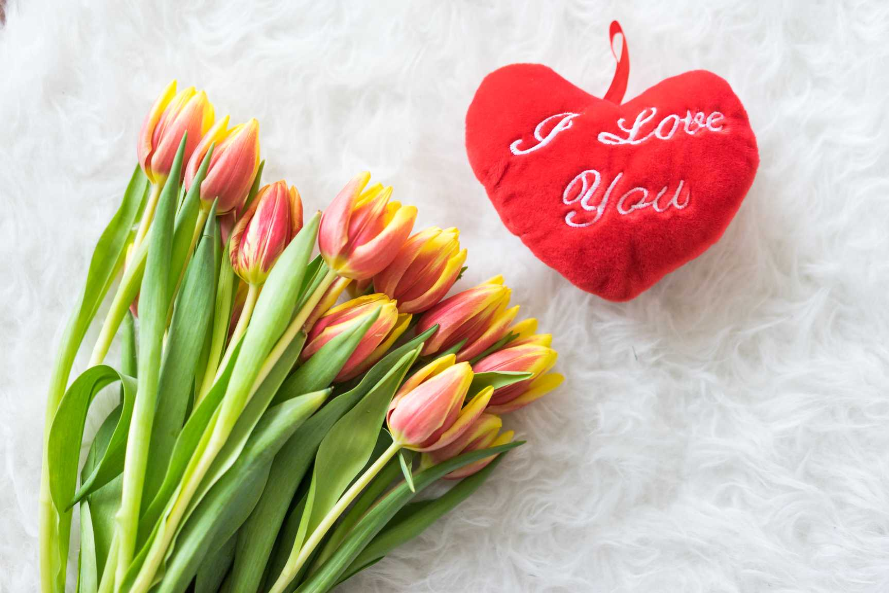 kees nelis tulips with plush i love you heart free stock photos picjumbo.com  - Valentýnské fotografie zdarma – picjumbo.com