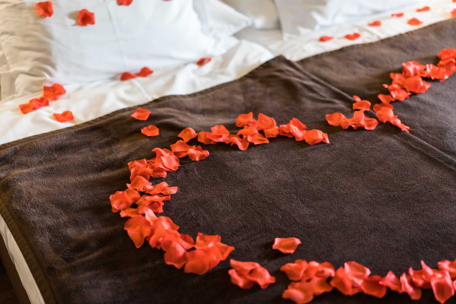 romantic and lovely bed of roses petals free stock photos picjumbo.com  - Valentýnské fotografie zdarma – picjumbo.com