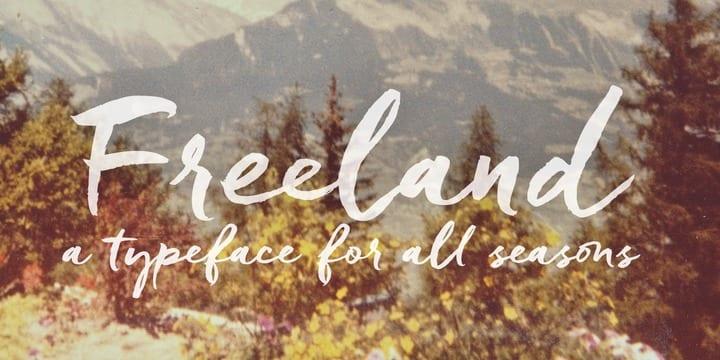 167021 - Font dňa – Freeland