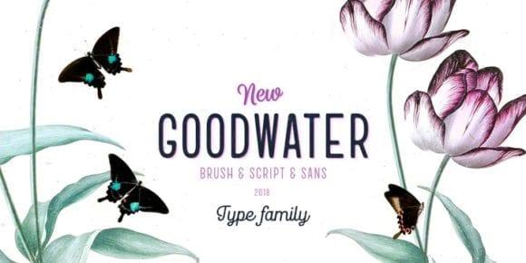 256573 580x290 - Font dňa – Goodwater