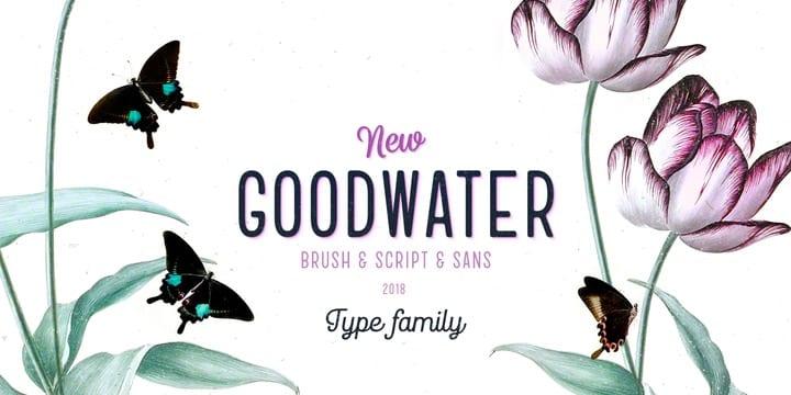 256573 - Font dňa – Goodwater