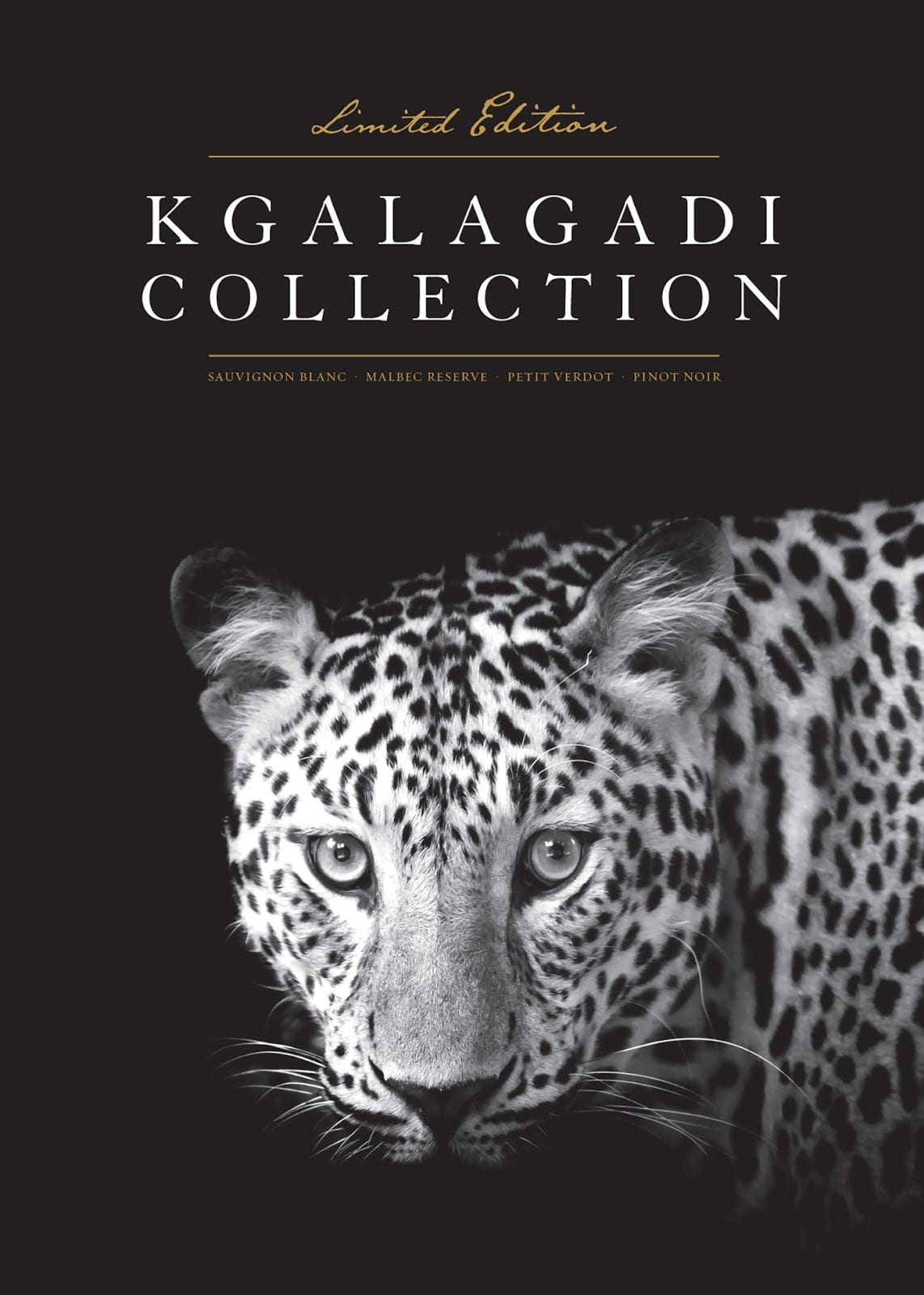 Kgalagadi Wines 05 - Unikátní design Kgalagadi Wines