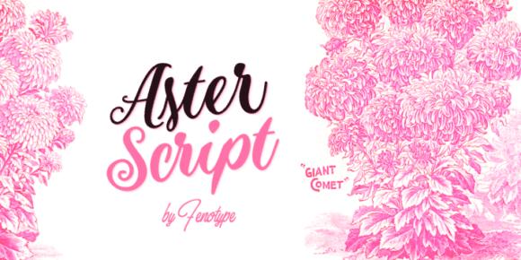 284058 580x290 - Font dňa – Aster Script