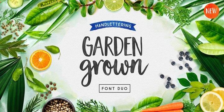 203930 - Font dňa – Garden Grown