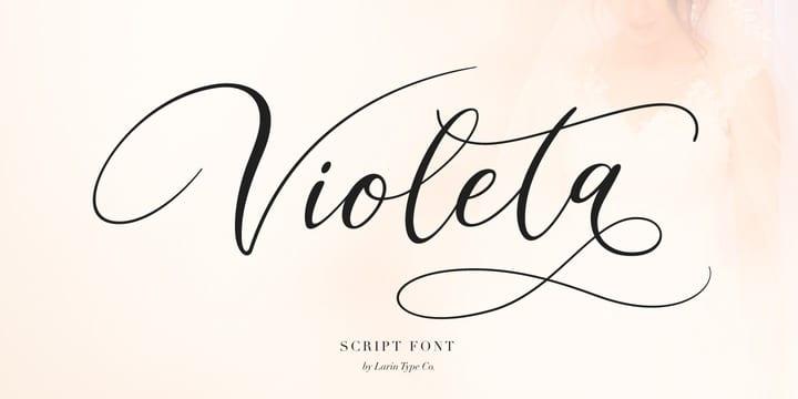 306427 - Font dňa – Violeta