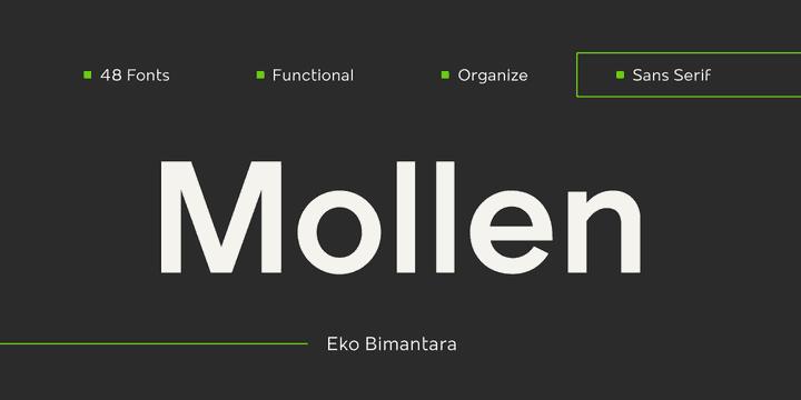 311149 - Font dňa – Mollen