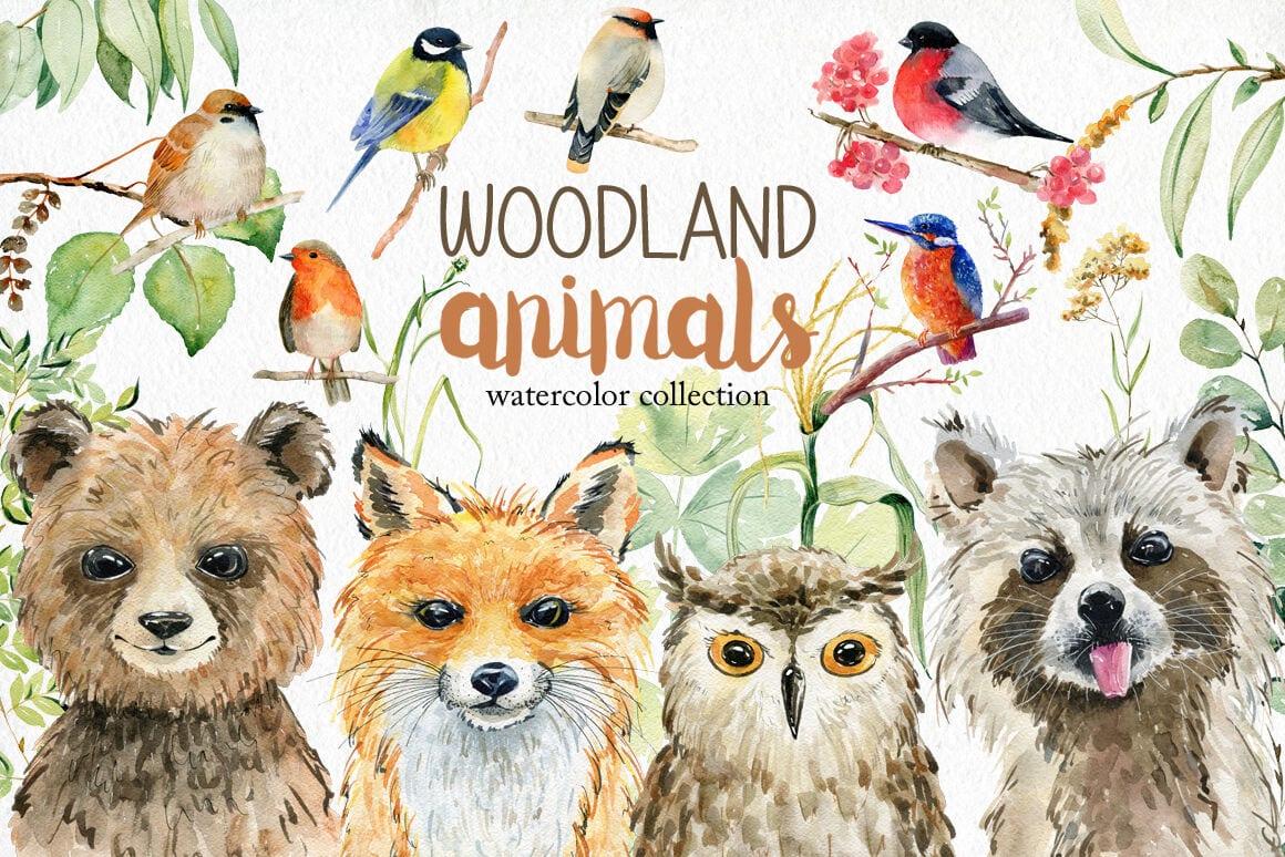 cover 24 - Stiahnite si balík ilustrovaných prvkov z lesa za 15 dolárov!