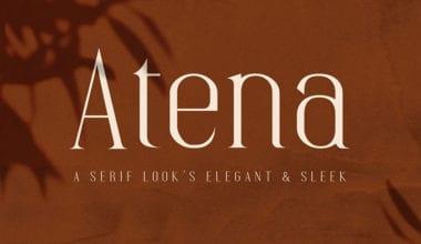 cover 6 380x220 - Stiahnite si písmo Atena za 5 dolárov!