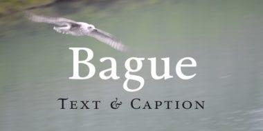 123024 380x190 - Font dňa – Bague
