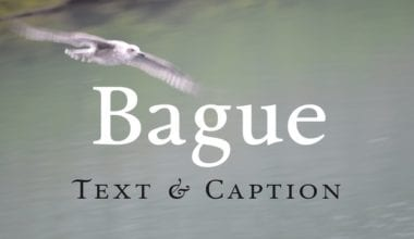 123024 380x220 - Font dňa – Bague