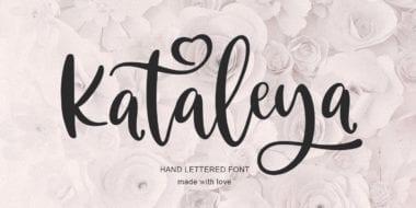317242 380x190 - Font dňa – Kataleya