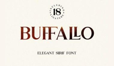 cover dtp 4 49 380x220 - Stiahnite si bezplatne písmo Buffallo