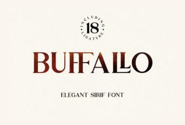 cover dtp 4 49 380x257 - Stiahnite si bezplatne písmo Buffallo
