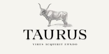 332575 380x190 - Font dňa – Taurus