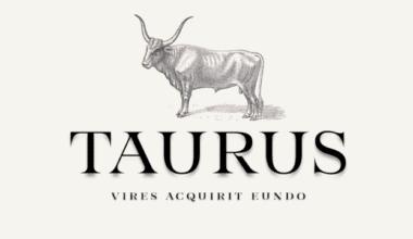 332575 380x220 - Font dňa – Taurus