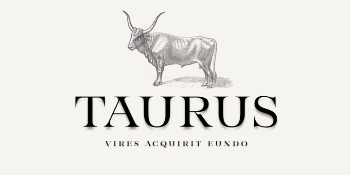 332575 - Font dňa – Taurus