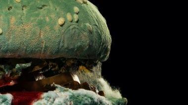 cover dtp 20 380x213 - Burger King ukazuje krásu bez umelín