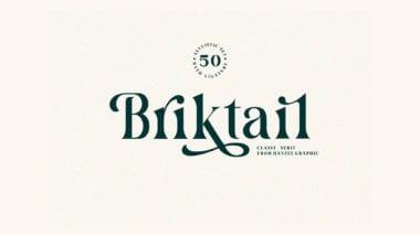 cov1 380x213 - Stiahnite si elegantný Briktail za 1 dolár!