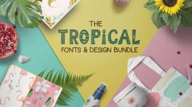 cover 10 380x213 - Stiahnite si letný Tropical Fonts and Design Bundle za 29 dolárov