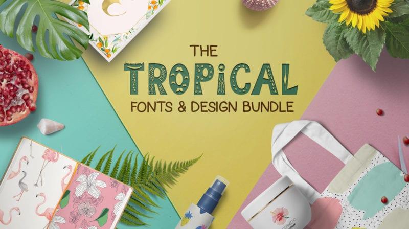 cover 10 800x448 - Stiahnite si letný Tropical Fonts and Design Bundle za 29 dolárov