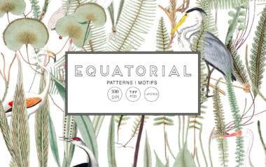 cover dtp2 5 380x239 - Stiahnite si Equatorial Pattern set za 30 dolárov